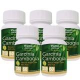 Bhumija Garcinia Cambogia (350 Mg Pack Of 5),  60 Capsules