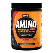QNT Amino RMT,  0.66 lb  Fruit Punch