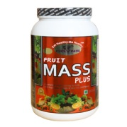 GDYNS Fruit Mass Plus,  1.1 lb  Mix Fruit