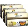 Grenera Moringa Tea,  Ginger  20 Piece(s)/Pack  - Pack of 3