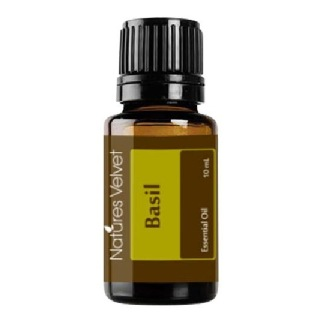Natures Velvet Essential Oil,  10 ml  Basil