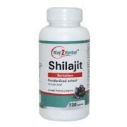 Way2Herbal Shilajit,  120 capsules