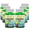Morpheme Remedies Garcinia 9X (Pack of 6),  60 capsules