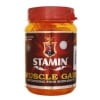 Stamin Nutrition Muscle Gain,  2.2 lb  Strawberry