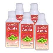 Zindagi Amla Juice,  Natural (Pack of 5)  0.5 L