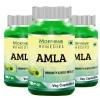 Morpheme Remedies Amla (500 mg) Pack of 3,  60 capsules