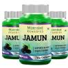 Morpheme Remedies Jamun (500 mg) Pack of 3,  60 capsules