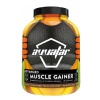 Avvatar Advanced Muscle Gainer,  6 lb  Rich Chocolate