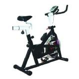 Pro Bodyline Fitness Spin Bike Model No 737